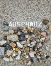 Auschwitz memorial in berlin germany at weissensee cemetery Stock Photography