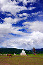 Auspicious clouds cover Tibetangrassland Royalty Free Stock Images
