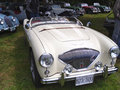 Austin Healy Royalty Free Stock Images
