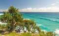 Australia coastline pandanus palms and rocky headlands along the queensland Stock Photos