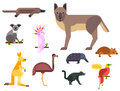 Australia wild animals cartoon popular nature characters flat style and australian mammal aussie native forest
