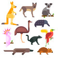Australia wild animals cartoon vector collection Royalty Free Stock Photo