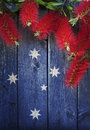 Australian background bottlebrush flowers a wood with and the southern cross stars Stock Images