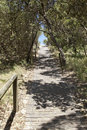 Australian beach path a typical to the at zenith nsw australia near shoal bay in the port stephens area Stock Photography