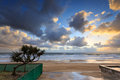 Australian foreshore early morning Royalty Free Stock Photo