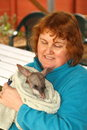 Australian greater bilby rare encounter the is a endangered species halls gap zoo is one of a few that are conducting captive Stock Photo