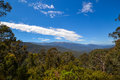 Australian landscape of native trees in snow capped mountains with blue sky. Royalty Free Stock Photo