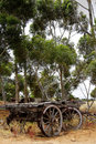 Australian history an abandoned farm wagon in the desert landscape of the bush Stock Images