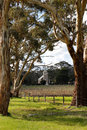 Australian lutheran church amongst the vines c south australia Stock Images