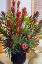Australian native flowers in a vase Royalty Free Stock Photo