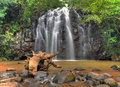 Australian waterfall ellinjae falls north queensland australia cairns Stock Photo