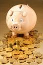 Australijski pieniądze banku świnka Zdjęcia Royalty Free