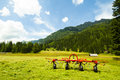 Austria summer meadow in rennweg autria Royalty Free Stock Photo