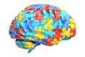 Autism concept with brain, 3D rendering