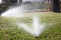 Automatic watering lawn in hotel Royalty Free Stock Photos