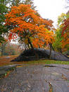 Automne dans Central Park Photos stock