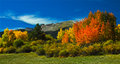 Automne du colorado Photographie stock