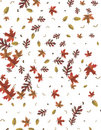 Autum Background Stock Photos