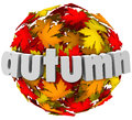 Autum leaves changing colors sphere season change autumn word on a ball or of color to illustrate the end of summer and the start Royalty Free Stock Image