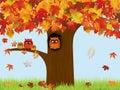 stock image of  Autumn