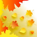 Autumn abstract background with fallen leaves Stock Image