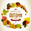 Autumn abstract floral background circle from colorful leafs with sample text Stock Images