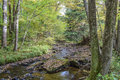 Autumn in the Alleghenies Royalty Free Stock Photo