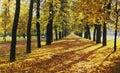 Podzim alej