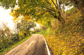 Autumn ambience atmosphere on a countryroad Stock Photography