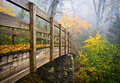 Autumn Appalachian Hiking Trail Blue Ridge Fall Royalty Free Stock Photo