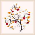 Autumn apple-tree. Royalty Free Stock Photography