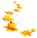 Autumn arrangement leaves and a yellow pumpkin on white background Stock Photo