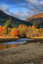 Autumn at Arrochar Royalty Free Stock Photo