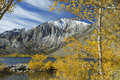 Autumn aspens at a mountain lake Royalty Free Stock Images