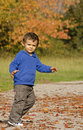 Autumn baby boy cute playing in park in a sunny day Stock Image