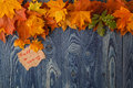 Autumn background autumn leaves over wooden background thanksgiving day concept Royalty Free Stock Photo