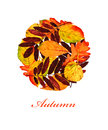 Autumn background banner with colorful leaves in decorative style and text template for greeting card on maroon Royalty Free Stock Image