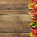 Autumn background with colored leaves on wooden board Stock Photo