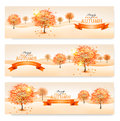 Title: Autumn background with colorful leaves and trees.