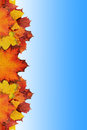 Autumn background concept with space for your text Royalty Free Stock Images
