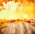 Autumn background with empty wooden planks concept and falling leaves Stock Photography