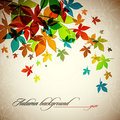 Autumn Background | Falling Le...