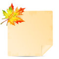 Autumn background with leaves and sheet of paper into a cell school Stock Photo