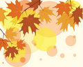 Autumn background with maple leaves Stock Photography