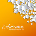 Autumn background with paper cut maple vector illustration Stock Photos