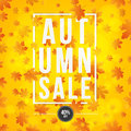 Autumn background. Poster for advertising autumn sale. Invitation card. White paper banner with text. Red orange maple leaves. Abs Royalty Free Stock Photo