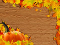 Autumn background with Pumpkin on wooden board. Royalty Free Stock Images