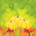Autumn background with pumpkins and leaves vector Royalty Free Stock Images
