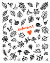 Autumn background, sketch drawing for your design Stock Photos