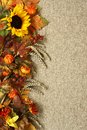 Autumn background sunflower leaves and fruits on burlap Stock Photography